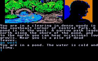 Screenshot of Fahrenheit 451
