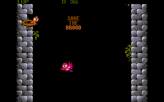 Screenshot of Fly Robin Fly