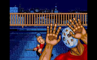Screenshot of Shadow Warriors