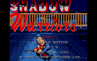 Screenshot of Shadow Warriors