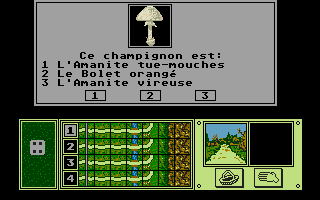 Thumbnail of other screenshot of Blues du Mycophage, Le