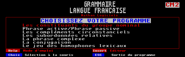Screenshot of Grammaire - Langue Française École CM2