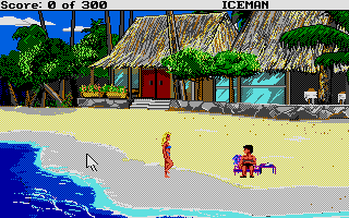 Screenshot of Code Name - Iceman