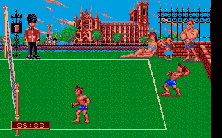 Screenshot of Beach Volley