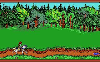 Screenshot of Hillsfar