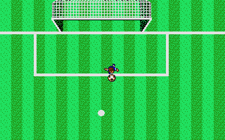 Screenshot of Microprose Soccer