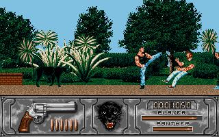 Screenshot of Wild Streets