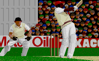 Thumbnail of other screenshot of Championship Cricket