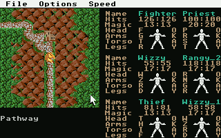 Screenshot of Phantasie 3 - The Wrath of Nikademus