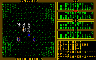 Screenshot of Ultima III - Exodus