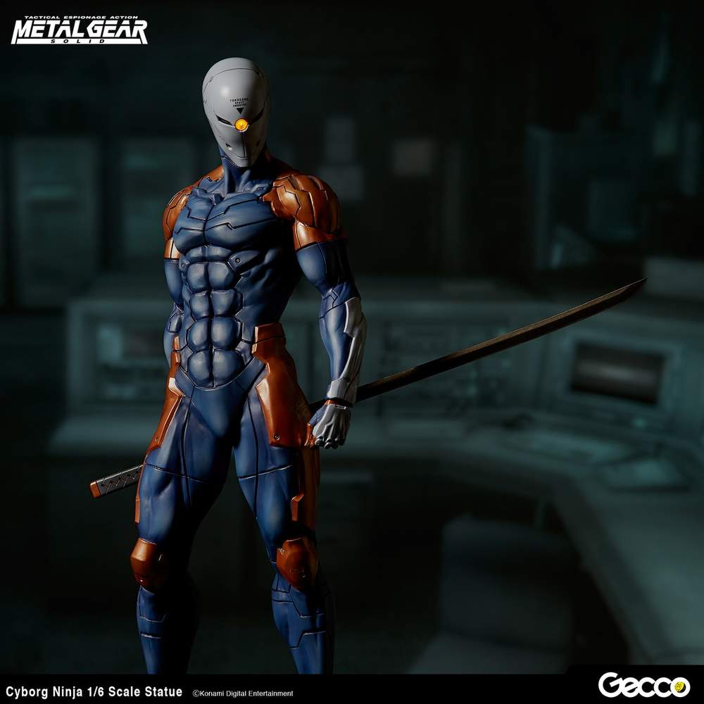 The Grey Fox ninja from the game Metal Gear Solid. This is where Darren got the inspiration for his book publishing company (and his nickname).